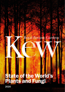 Kew report about plants going extinct